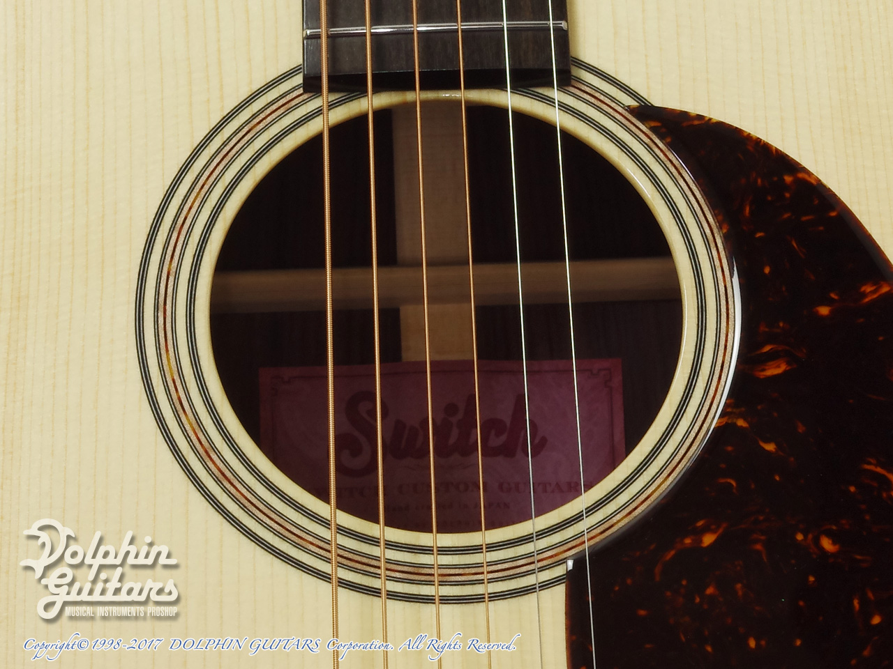 SWITCH: SCD-2H A (Adirondack Spruce & Indian Rosewood) (8)