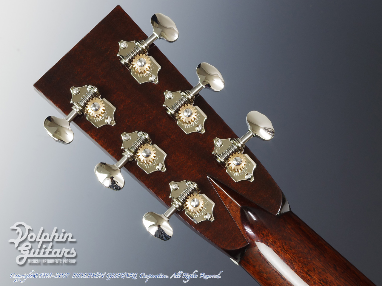 COLLINGS: D-2H Traditional (Torrefied Sitka Spruce) (7)