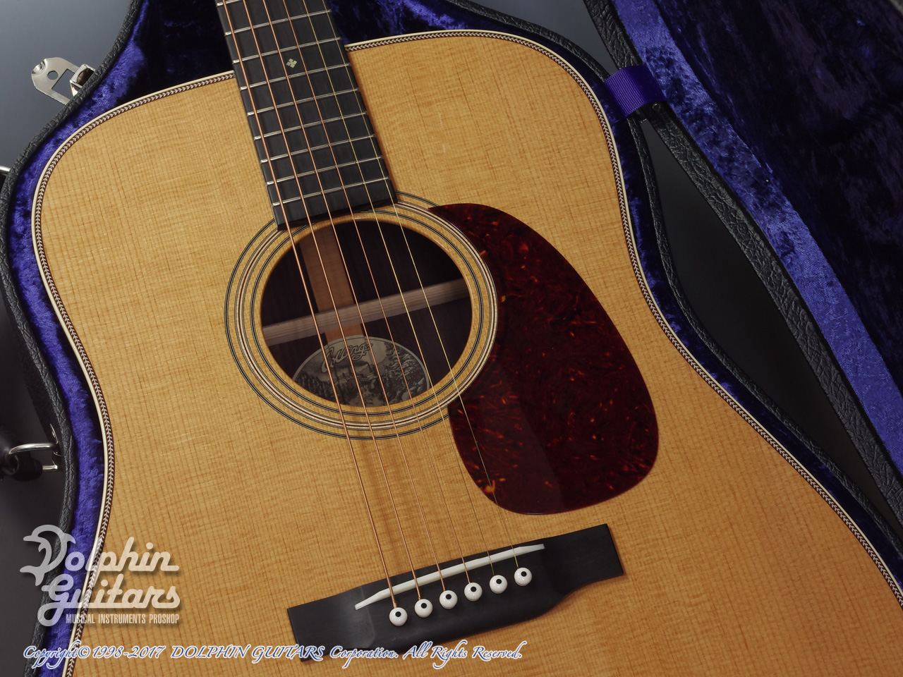 COLLINGS: D-2H Traditional (Torrefied Sitka Spruce) (8)