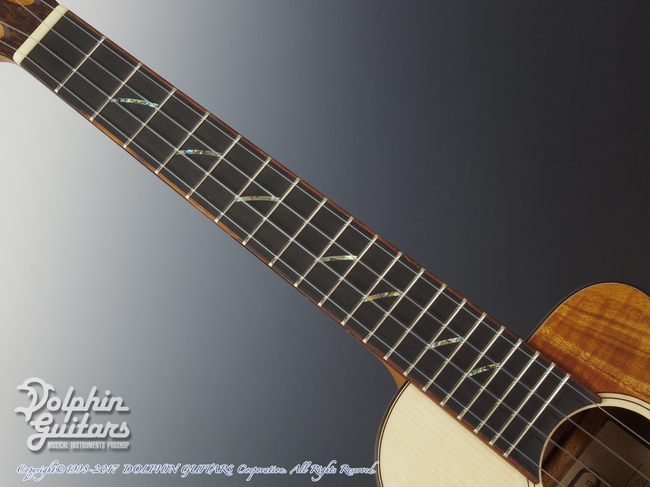 TODA GUITARS: VT-CW (German & Madagascar) (4)