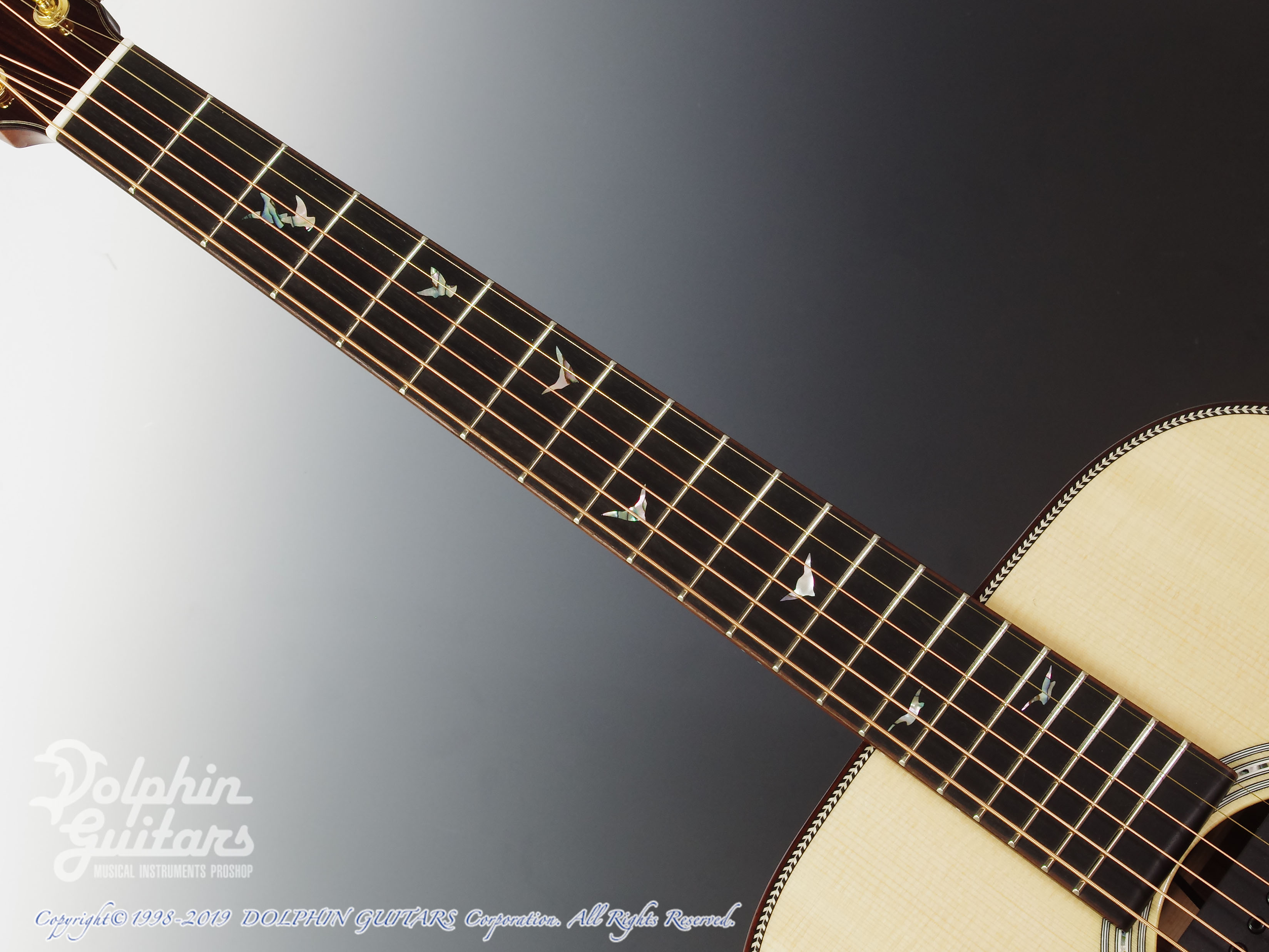 Greven Guitars Japan: Oshio-D HR (Honduras Rosewood) w/RAPTOR SYSTEM by TRIAL  (4)