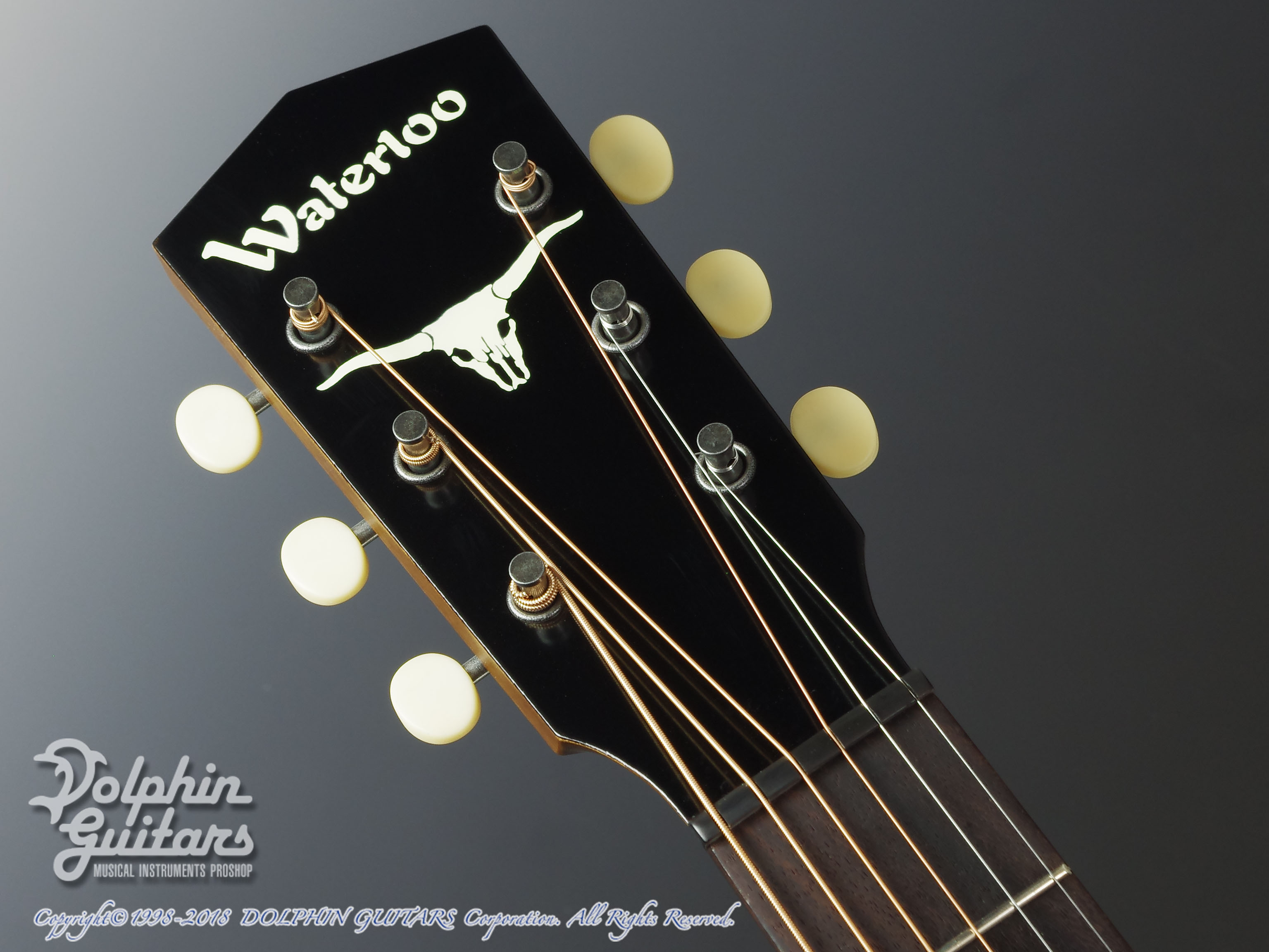 WATERLOO (by Collings) : WL-14X Longhorn (Ladder Bracing / Truss Rod) (6)