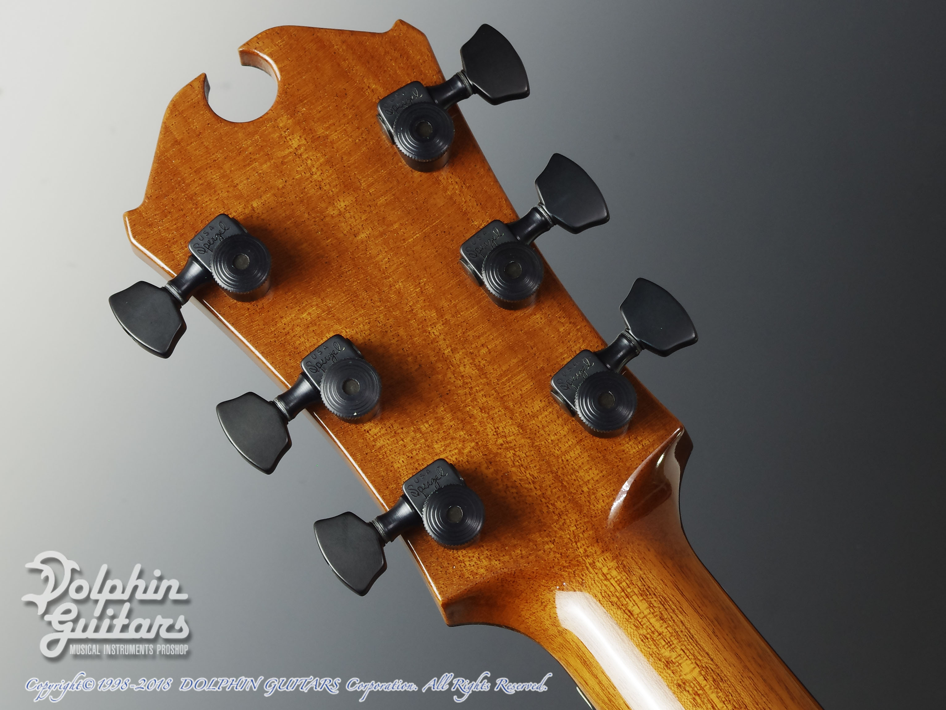Marchione Guitars: OMC Brazilian Rosewood (7)