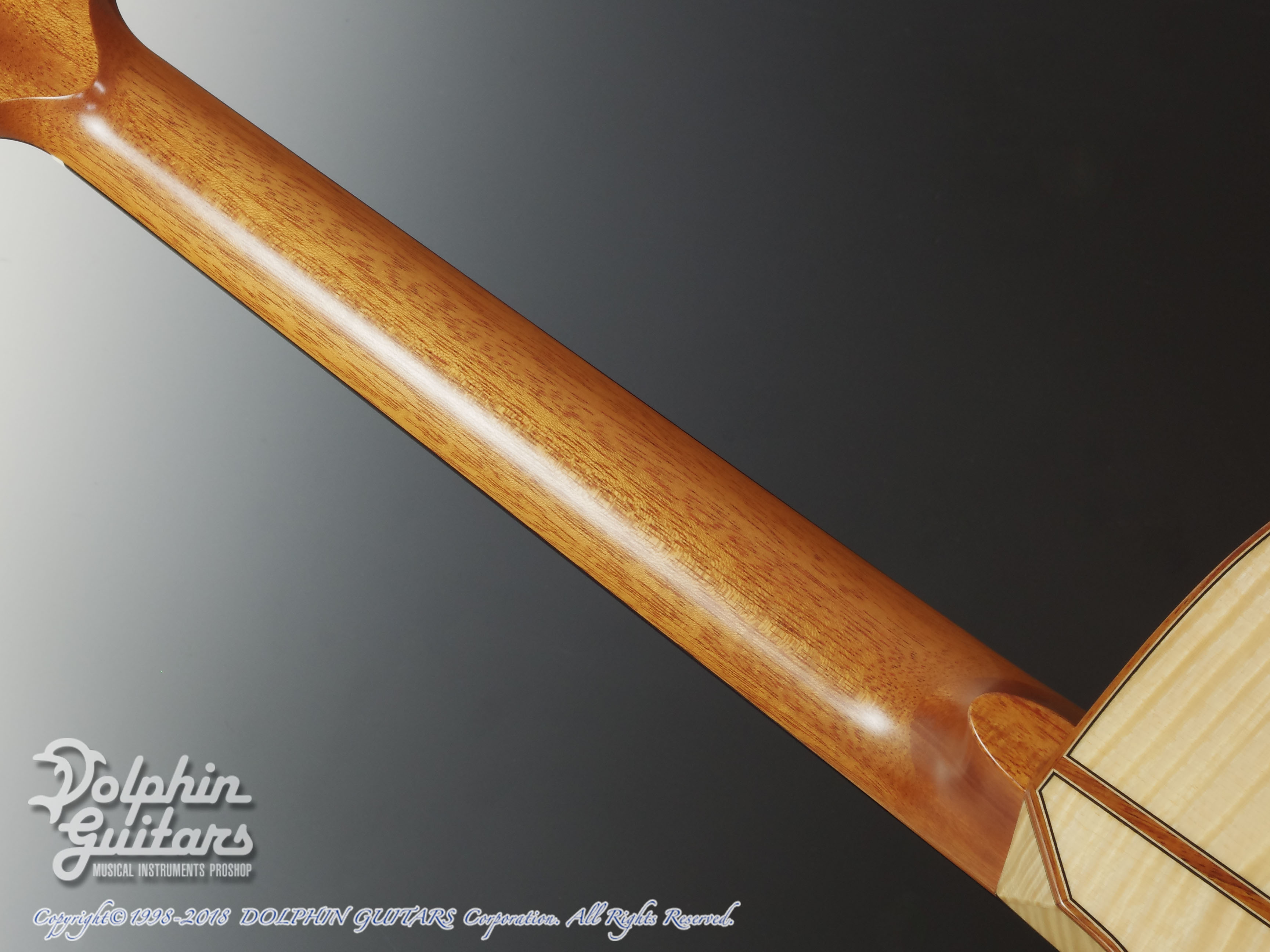ASTURIAS: Grand Solo Premio Premio/S Maple LTD (Curly Maple) (5)