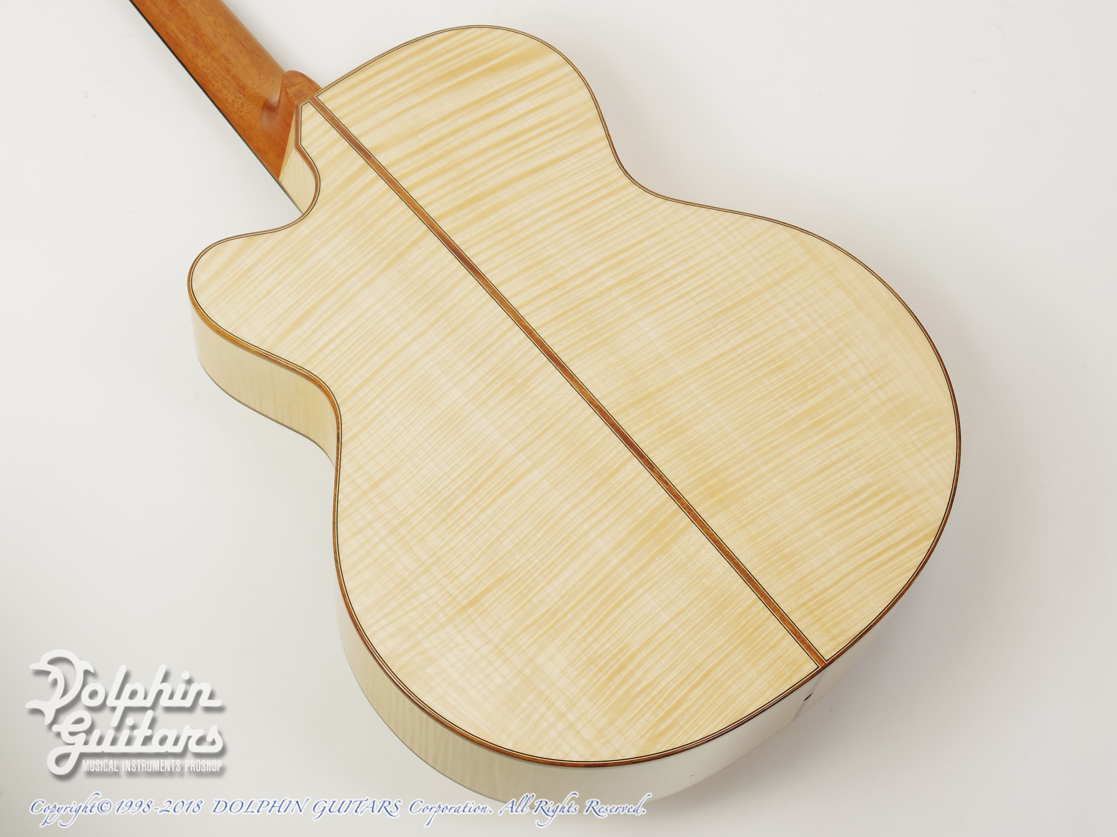 ASTURIAS: Grand Solo Premio Premio/S Maple LTD (Curly Maple) (3)