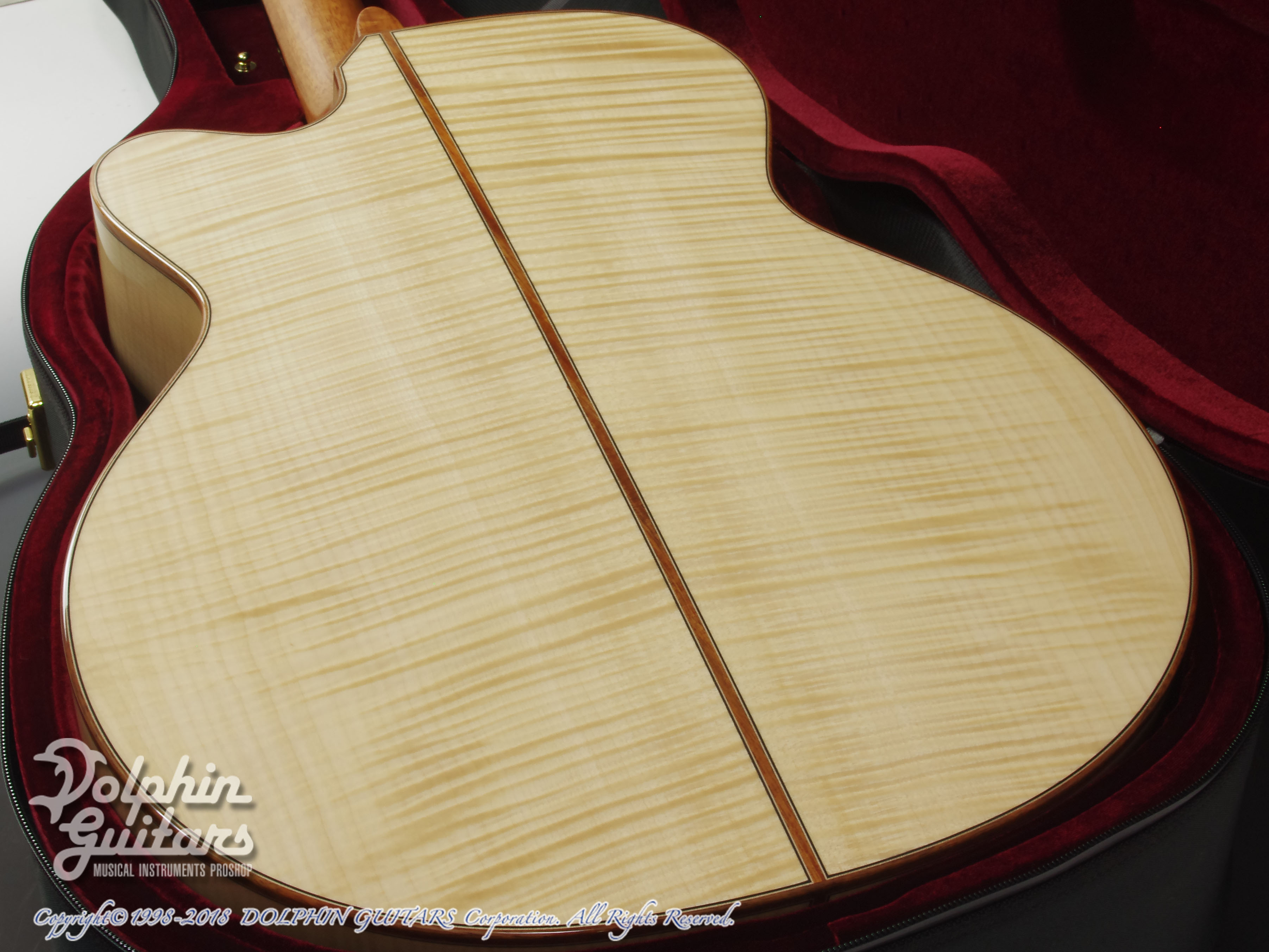 ASTURIAS: Grand Solo Premio Premio/S Maple LTD (Curly Maple) (10)