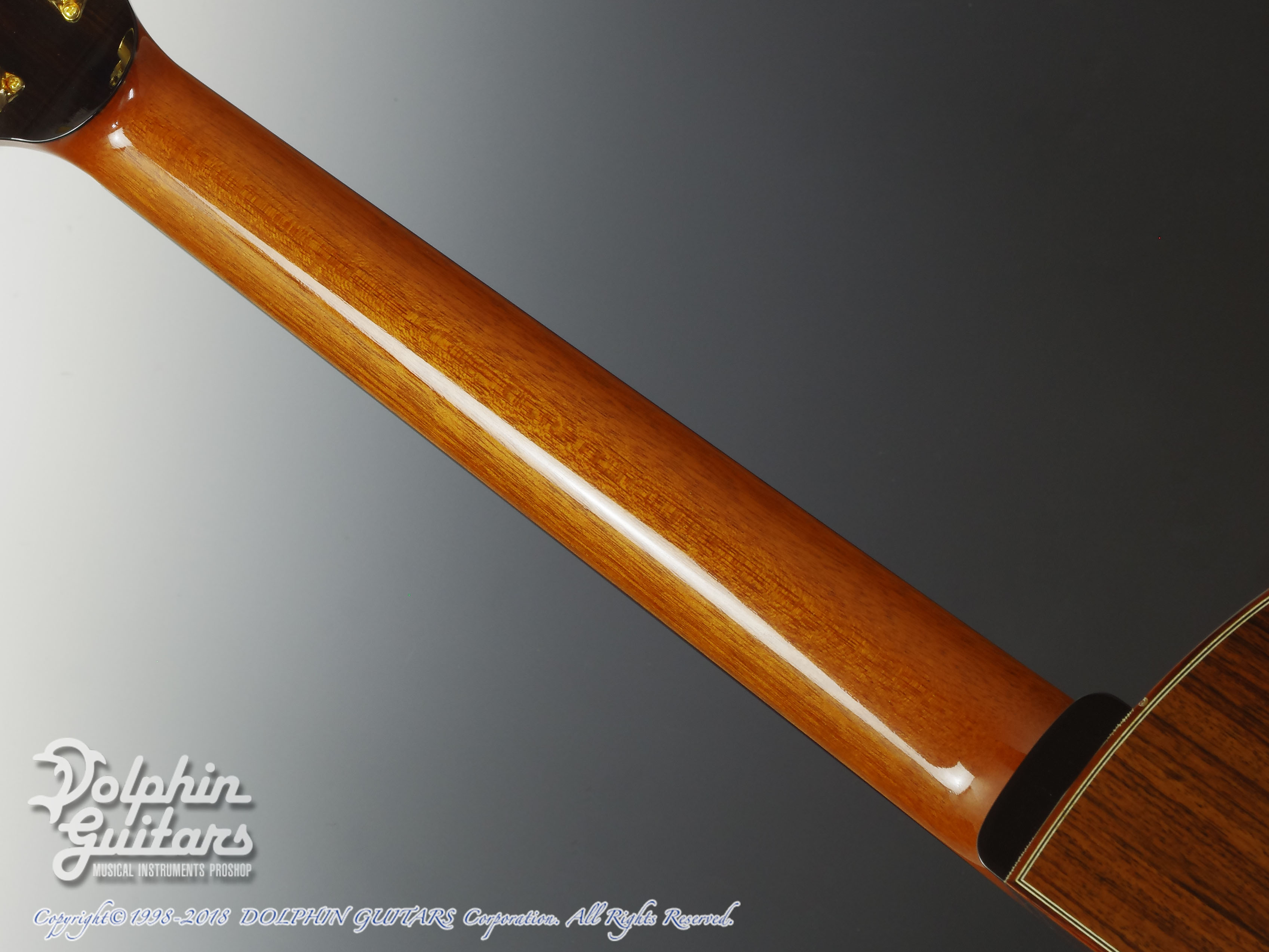 IKKO MASADA: Model C Cutaway (German Spruce & Indian Rosewood) (5)
