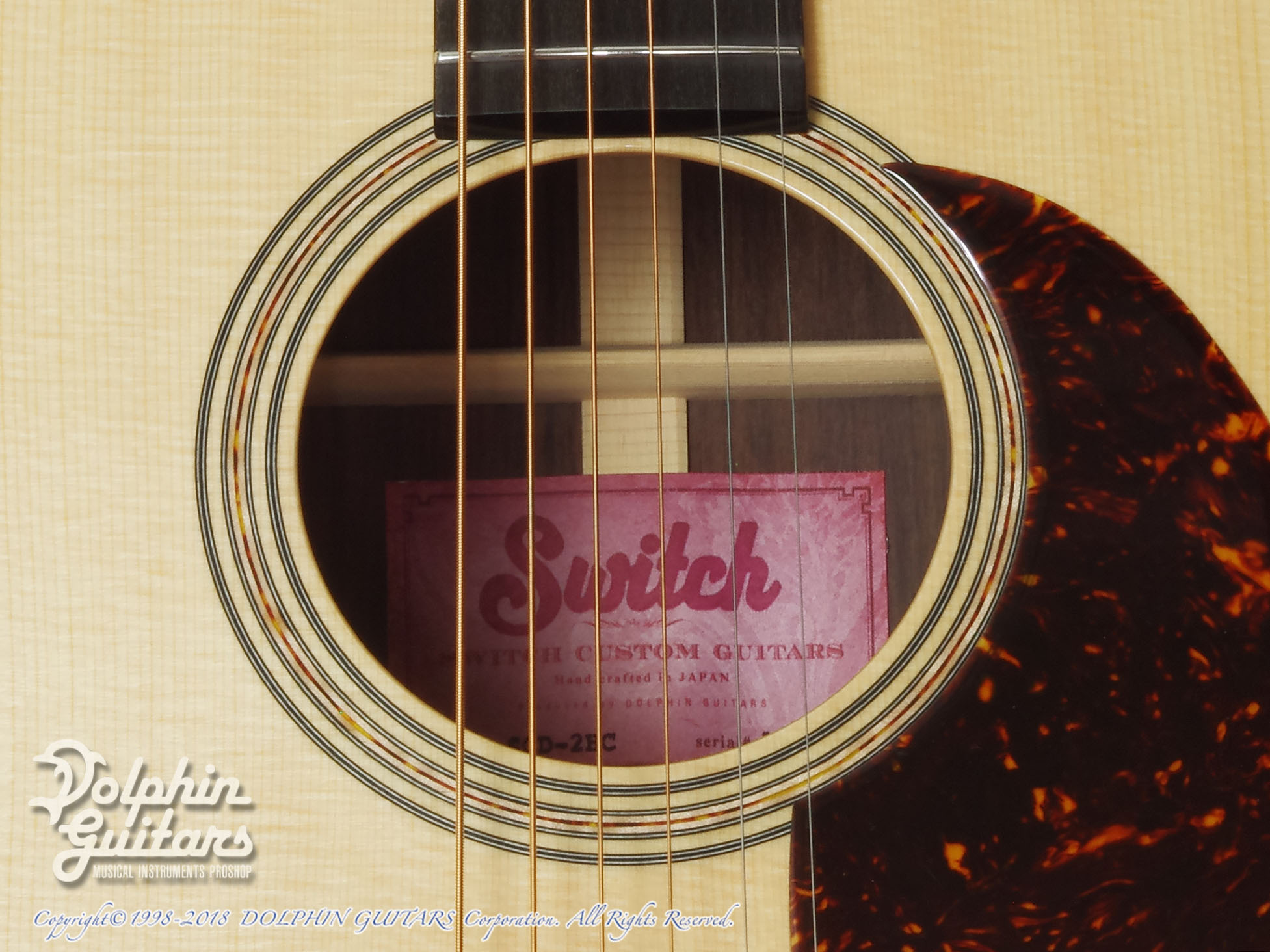 SWITCH: SCD-2HC (Sitka Spruce & Indian Rosewood) (9)