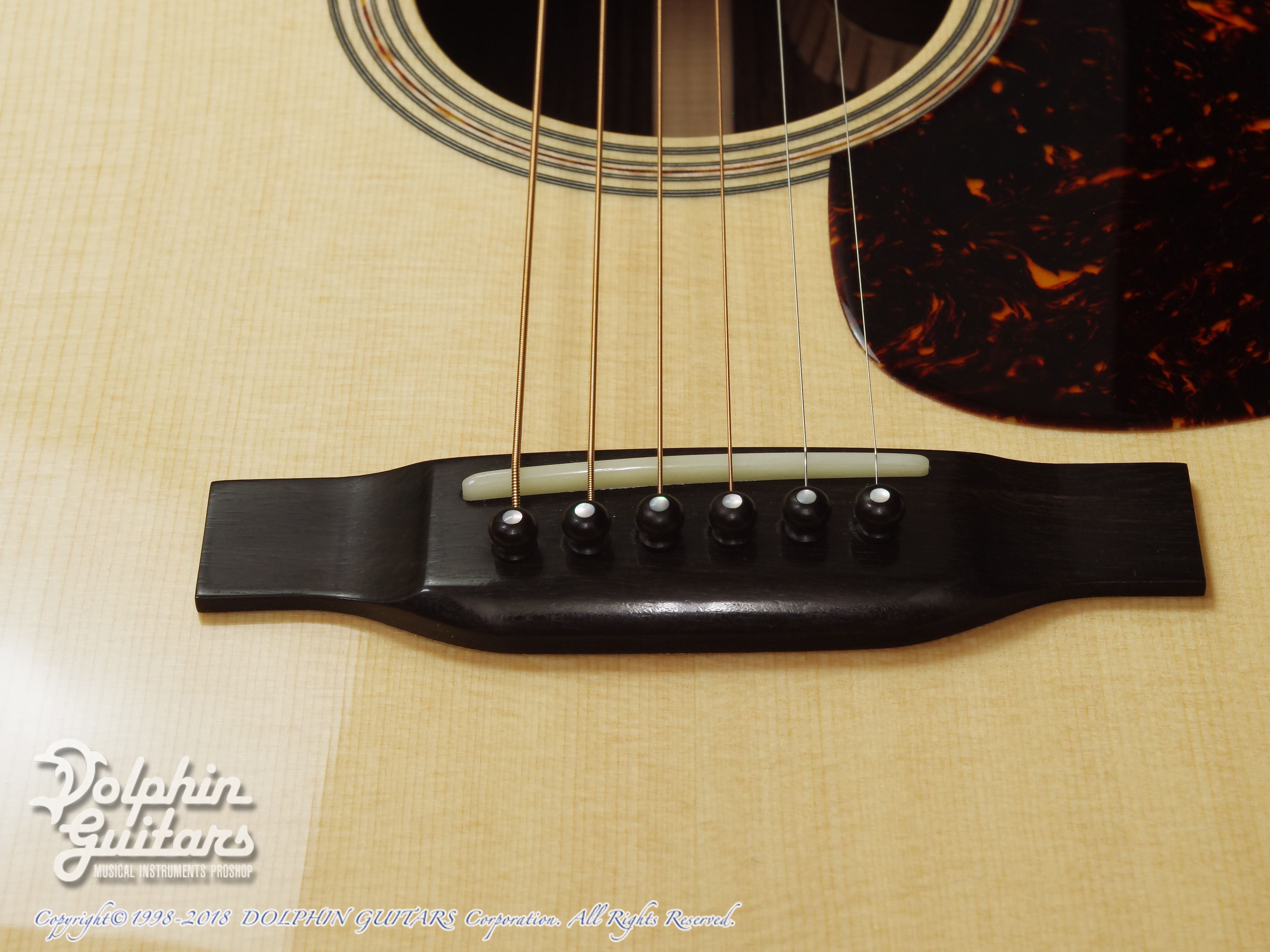 SWITCH: SCD-2HC (Sitka Spruce & Indian Rosewood) (10)