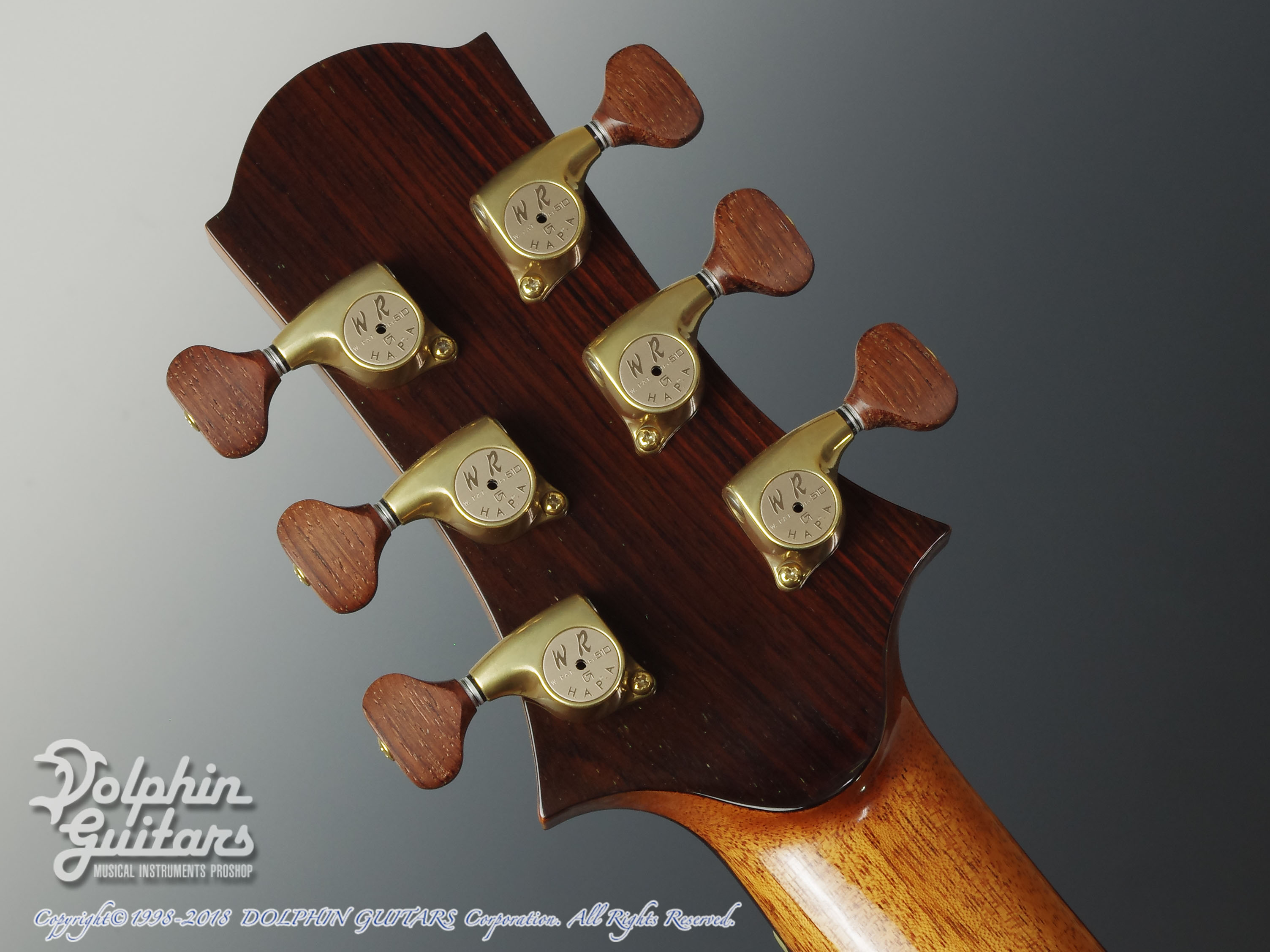 WATER ROAD GUITARS: Deep Arte (Brazilian Rosewood) (7)