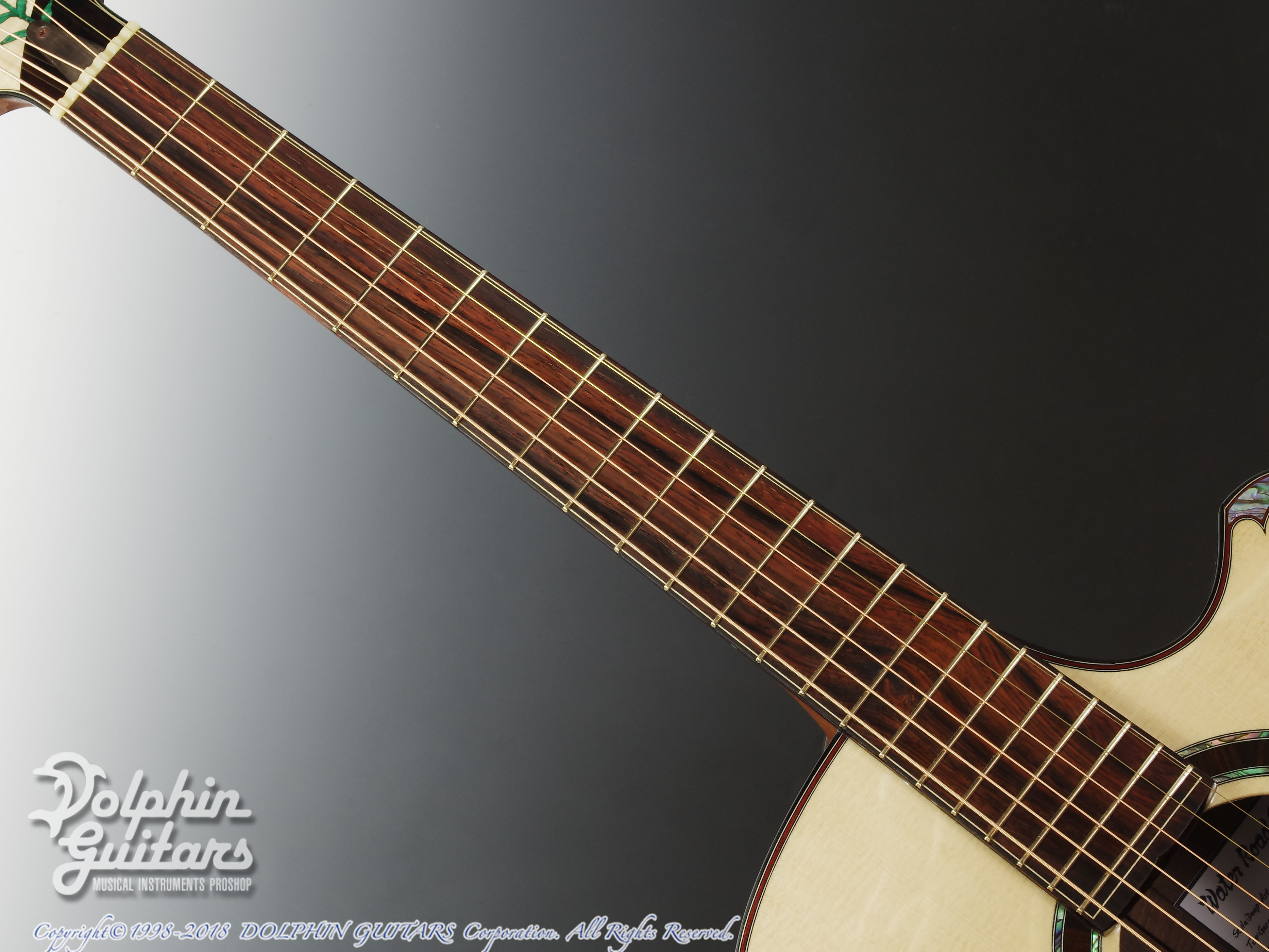 WATER ROAD GUITARS: Deep Arte (Brazilian Rosewood) (4)
