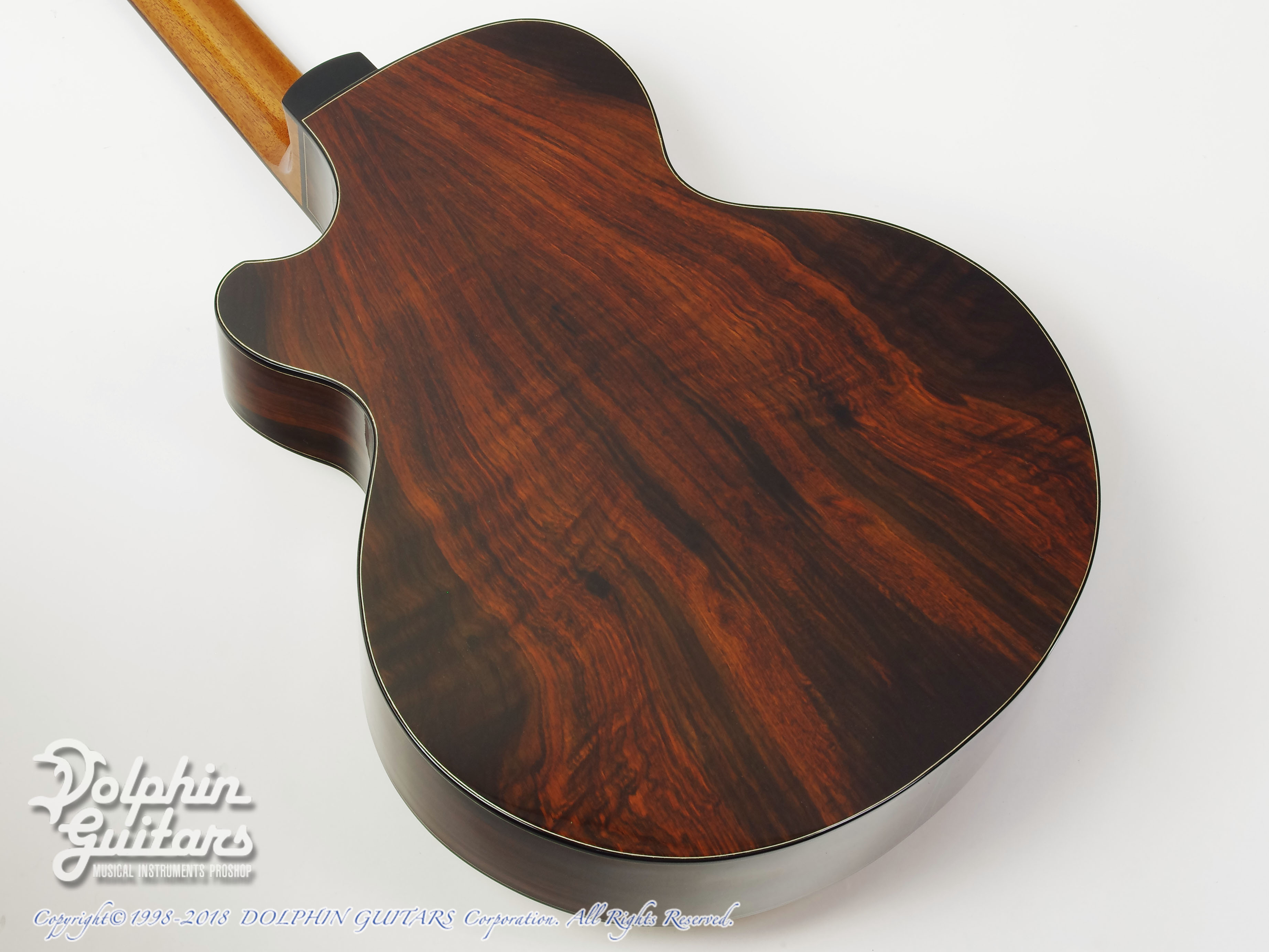 WATER ROAD GUITARS: Deep Arte (Brazilian Rosewood) (3)
