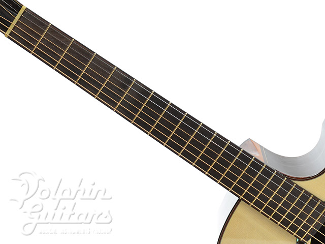WATER ROAD GUITARS: Deep Arte Custom (Jacaranda)  (4)