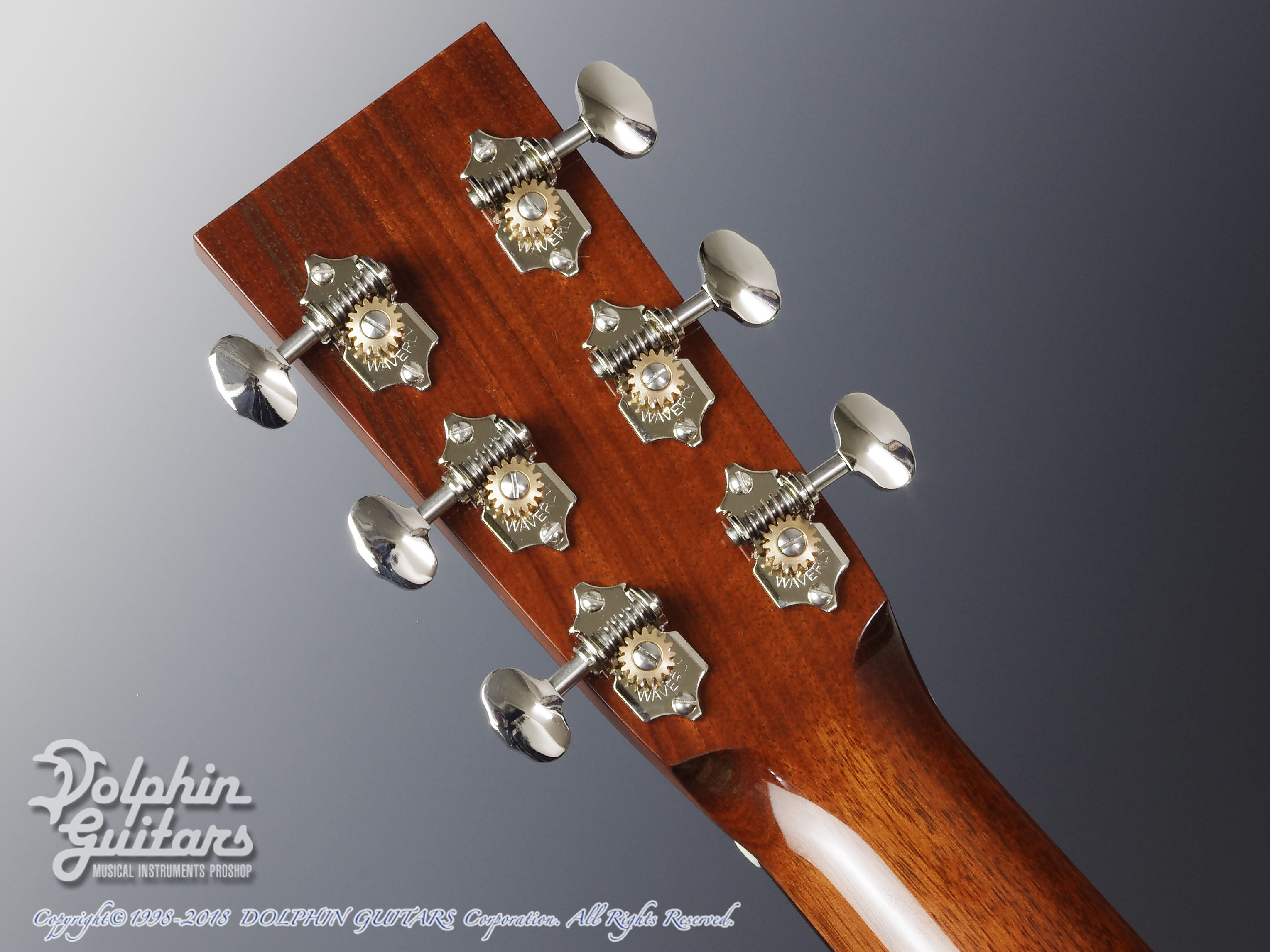 COLLINGS: D-1AT SB (Torrefied Adirondack Spruce) (7)