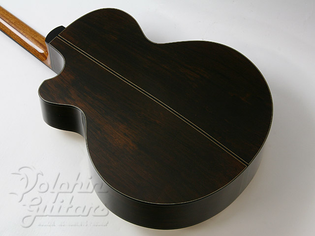 WATER ROAD GUITARS: Deep Arte (Brazilian Rosewood) (5)