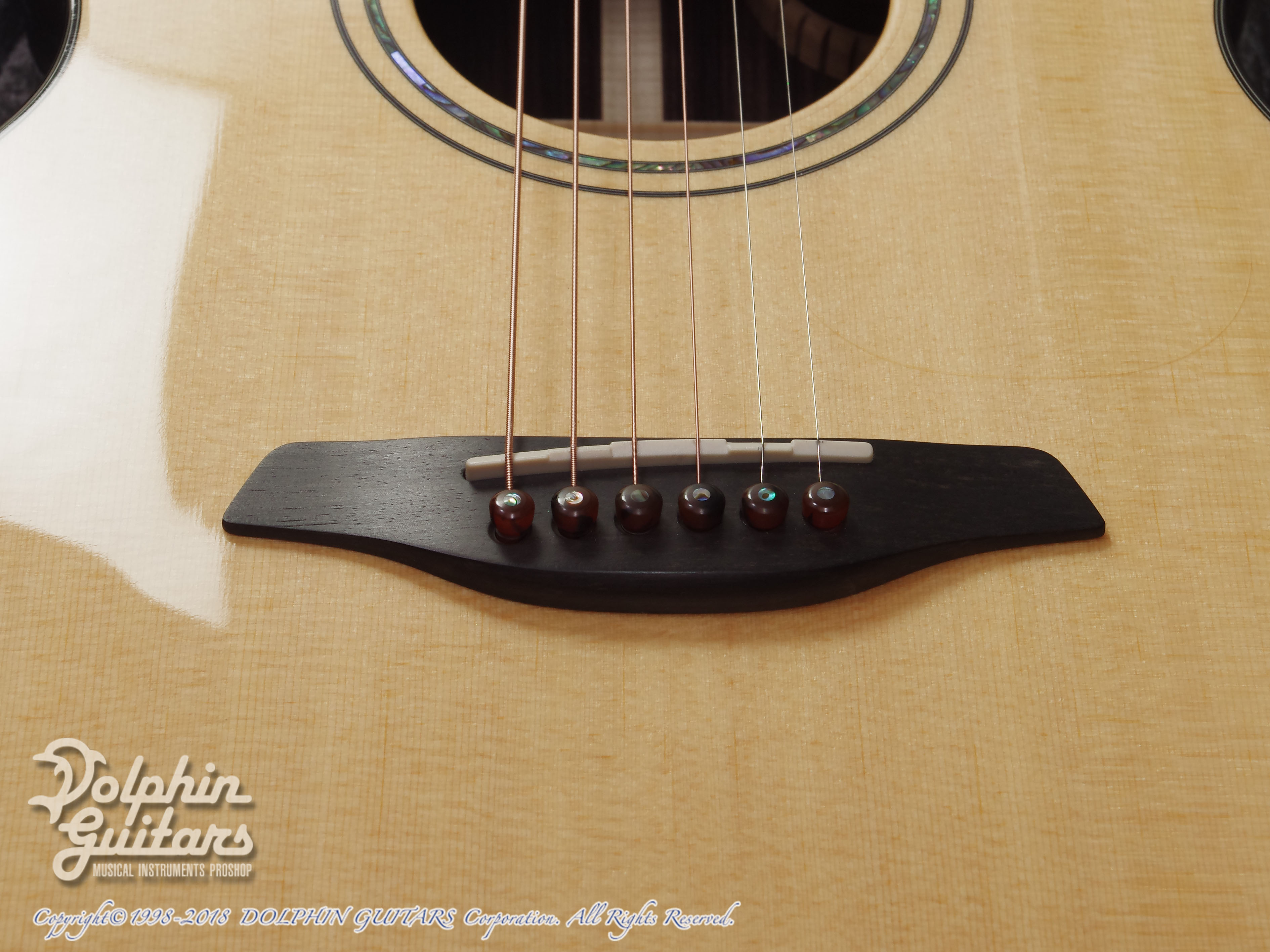 FURCH: Yellow Gc-SR  ( Sitka spruce & Indian rosewood) (9)