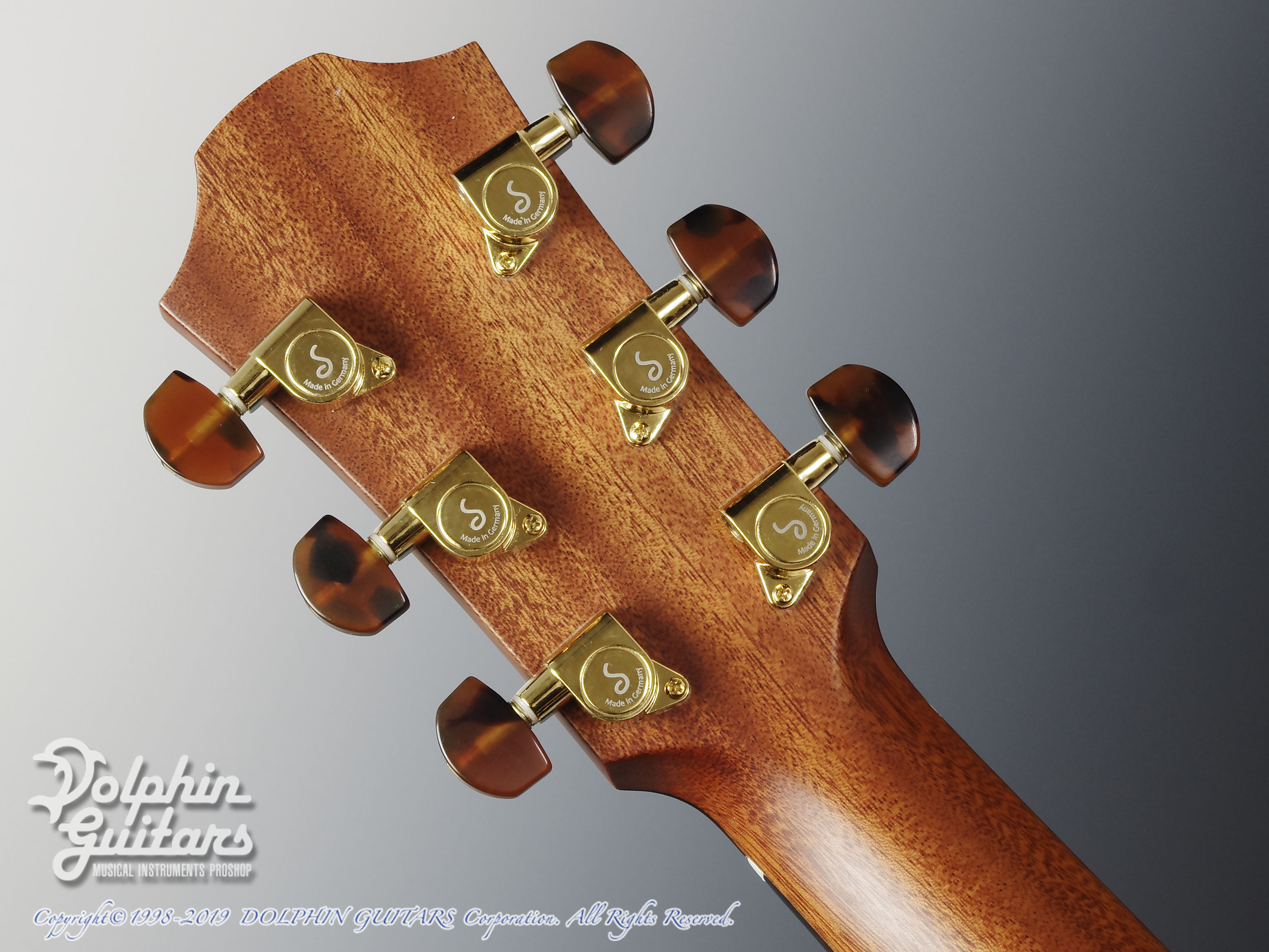 FURCH: Yellow Gc-CR  (Cedar & Indian rosewood) (7)