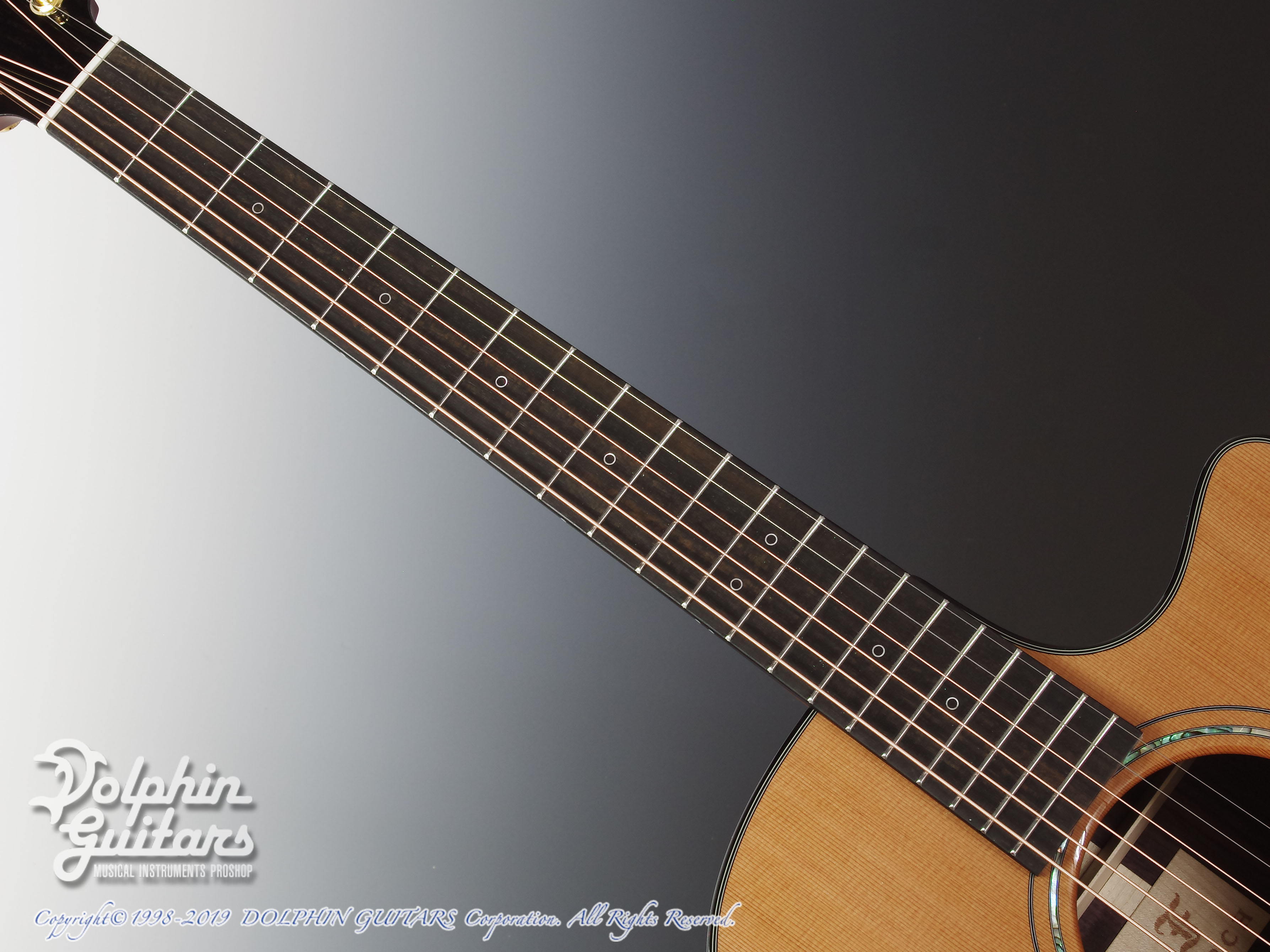 FURCH: Yellow Gc-CR  (Cedar & Indian rosewood) (4)