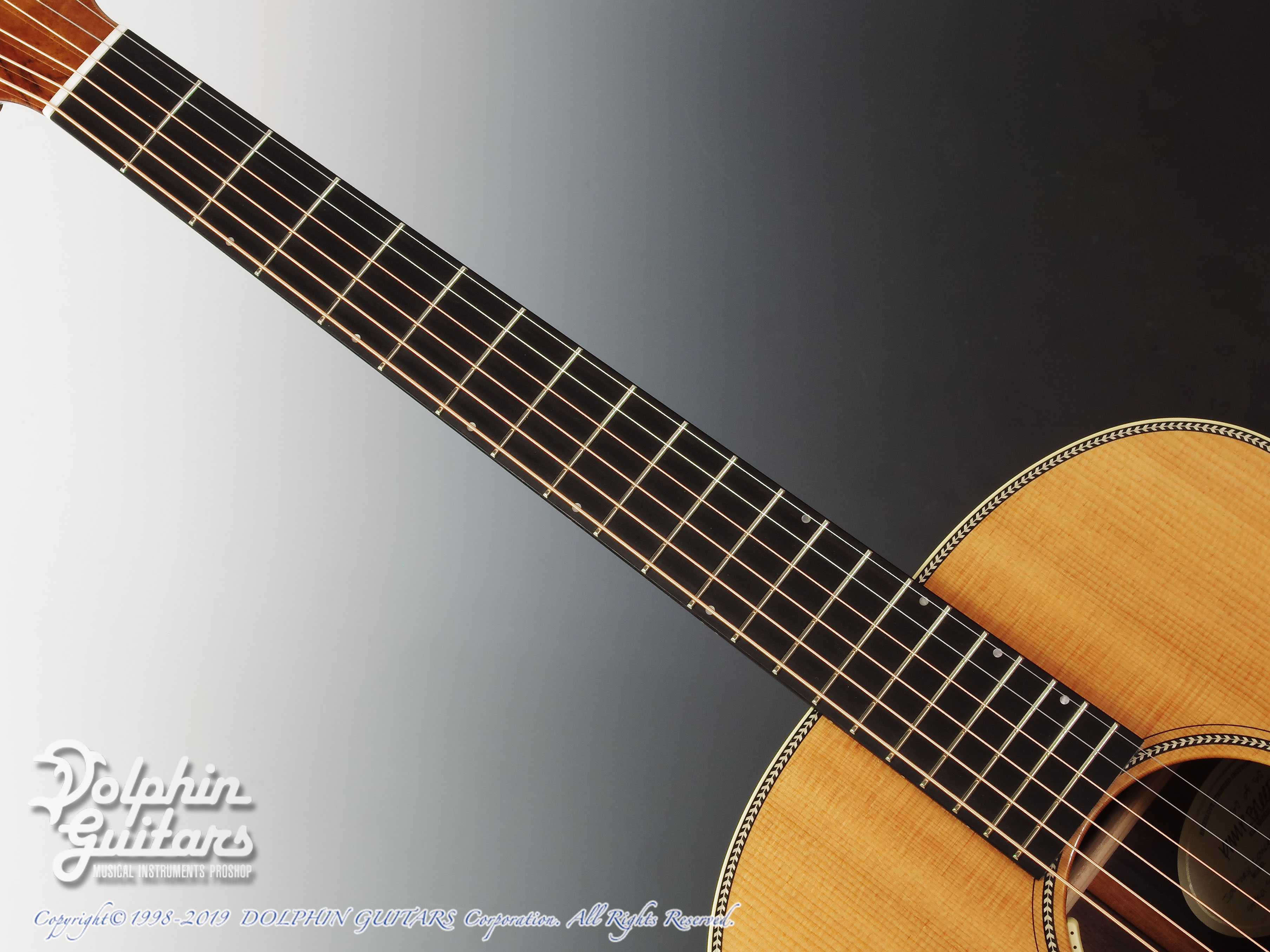 Breedlove: Journey C22E (Brazilian Rosewood) (4)