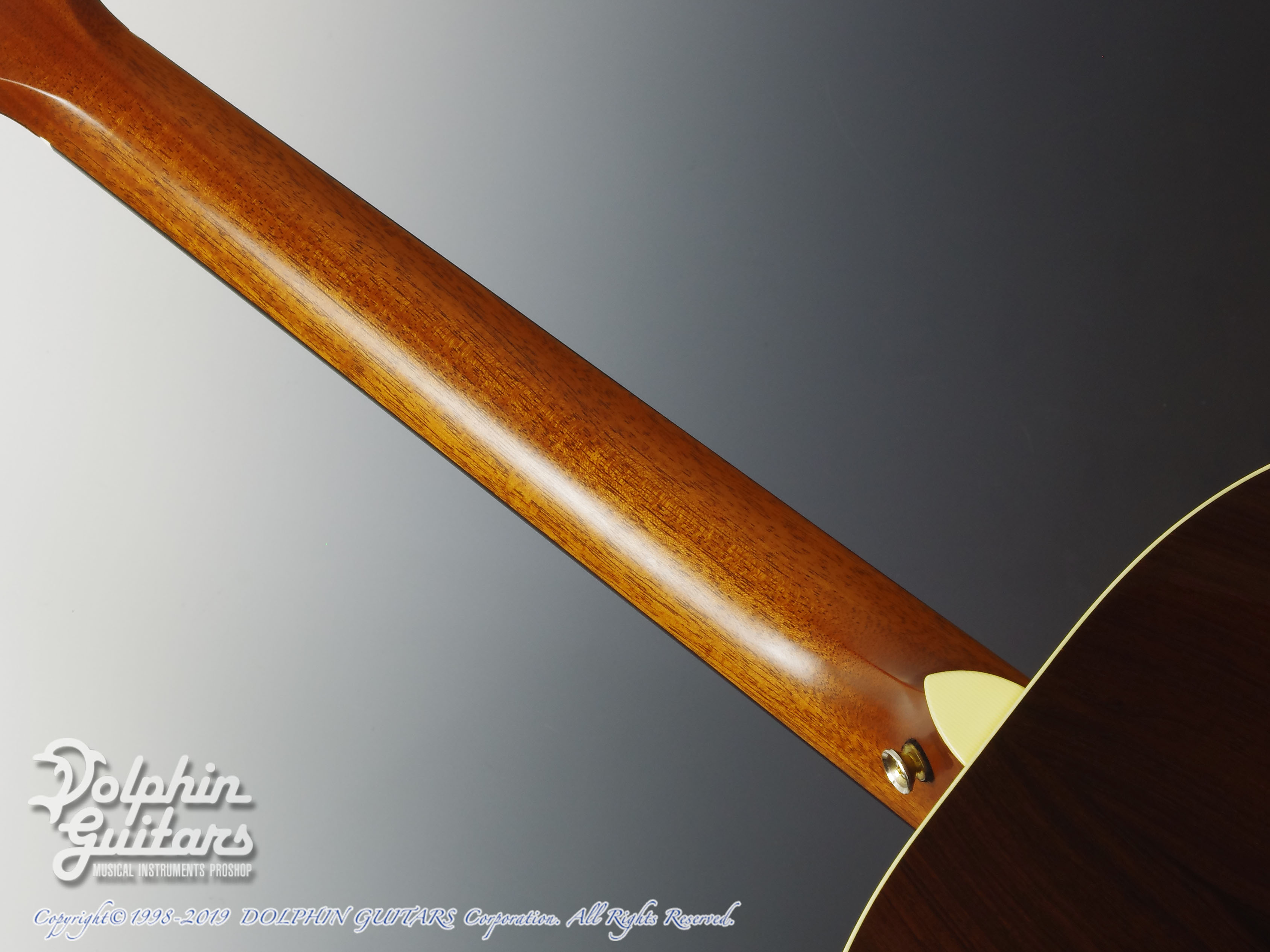 Breedlove: Journey C22E (Brazilian Rosewood) (5)
