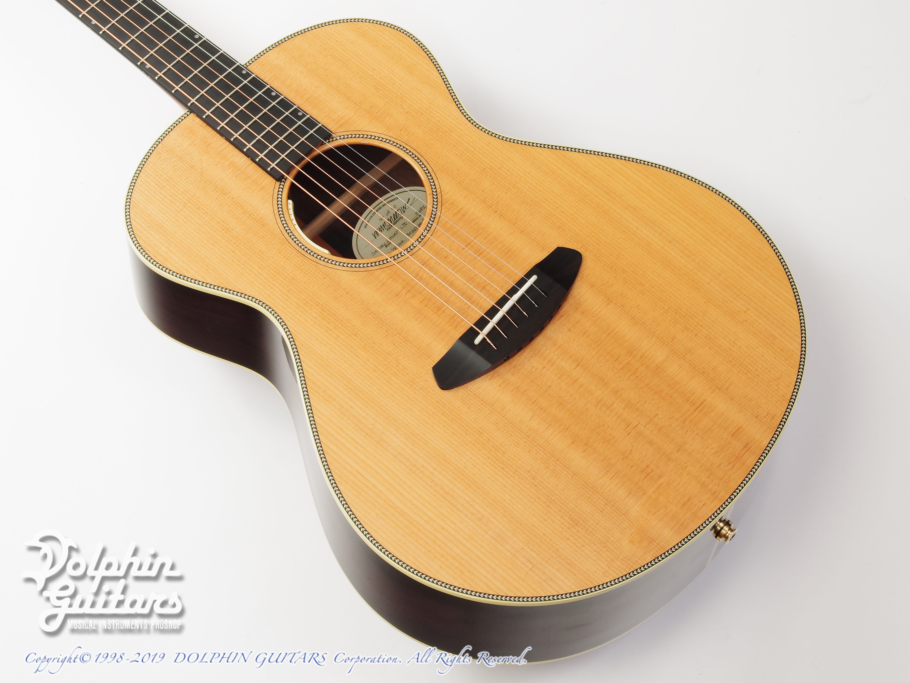 Breedlove: Journey C22E (Brazilian Rosewood) (1)