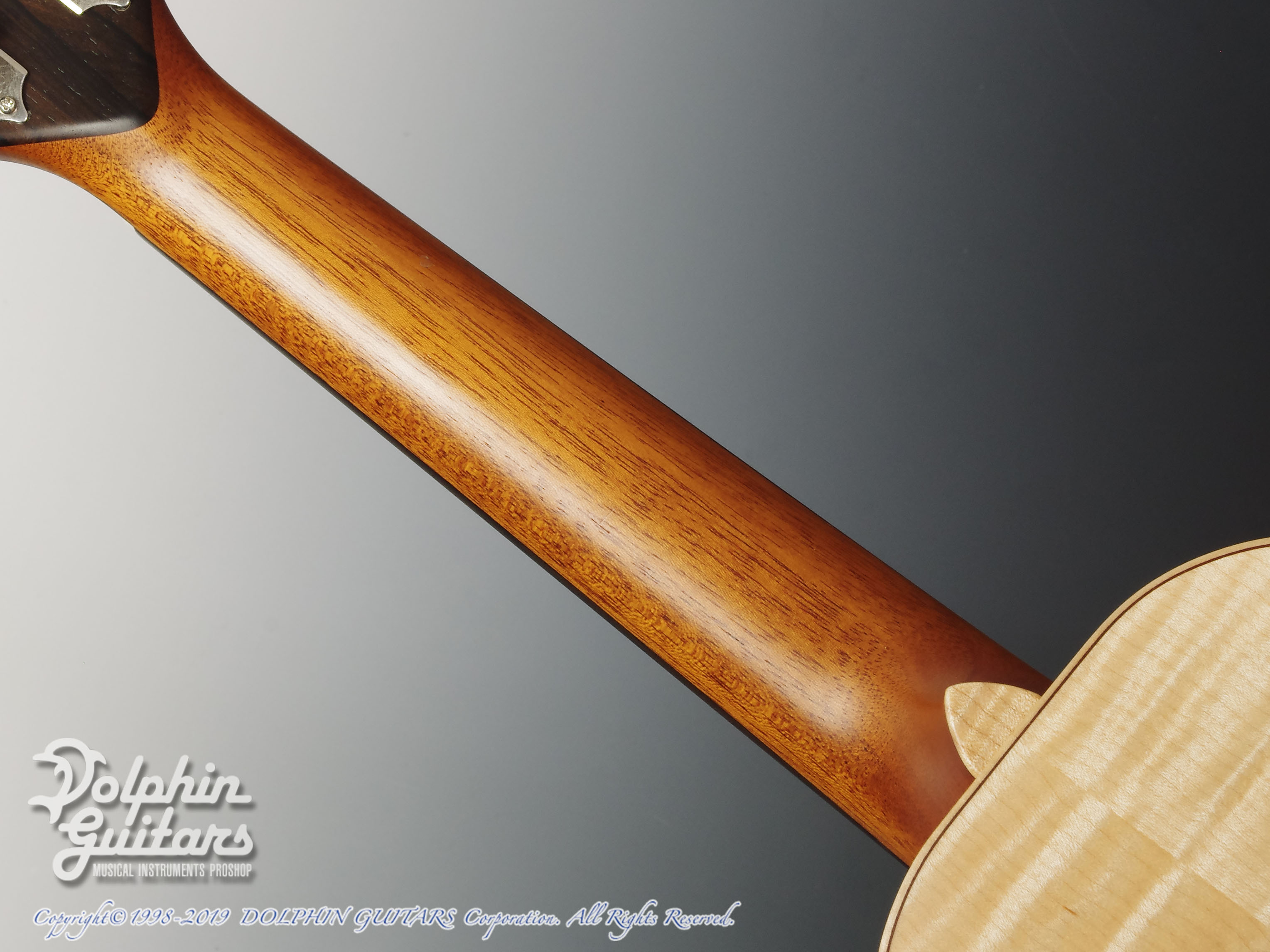 TODA GUITARS: VC (Spruce & Curly Maple) (5)