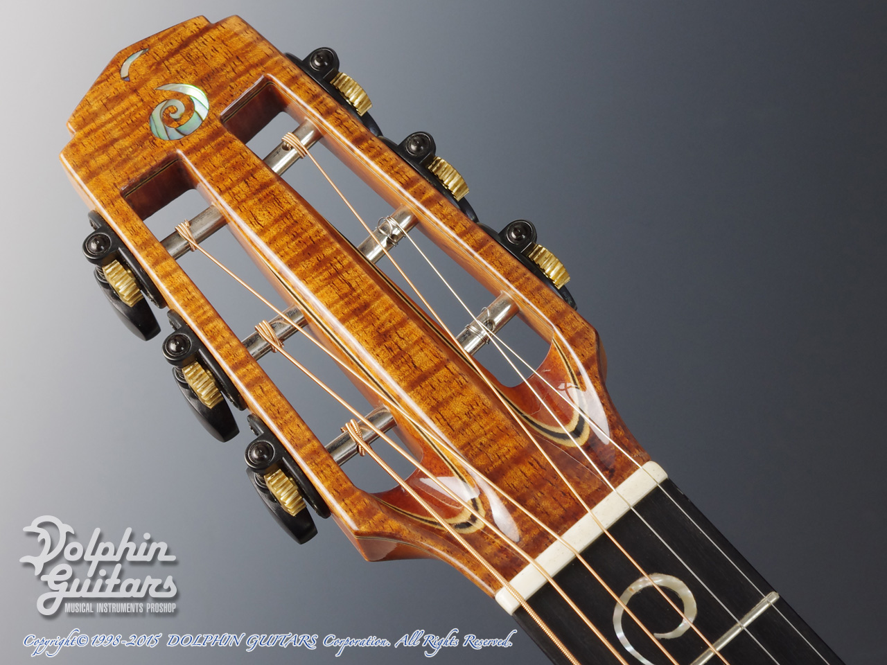 JACK SPIRA GUITARS: JS-A1C Grape Vine (6)