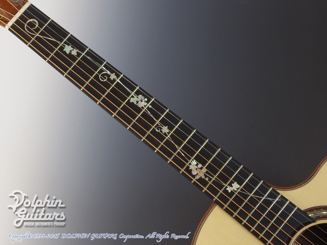 JACK SPIRA GUITARS: JS-A1C Grape Vine (4)