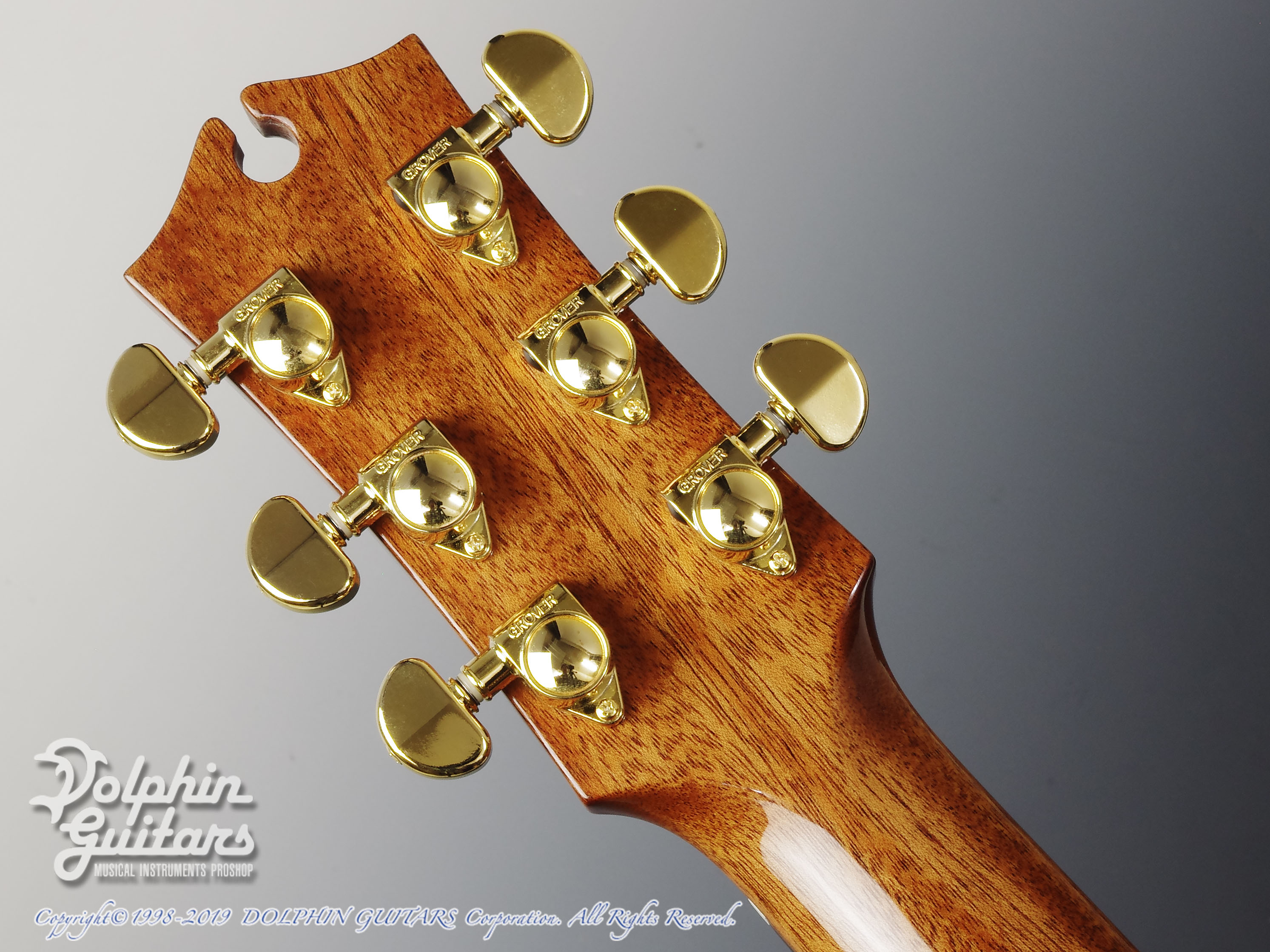 MATON: EM100C-Messiah (Dreadnought Cutaway) (7)