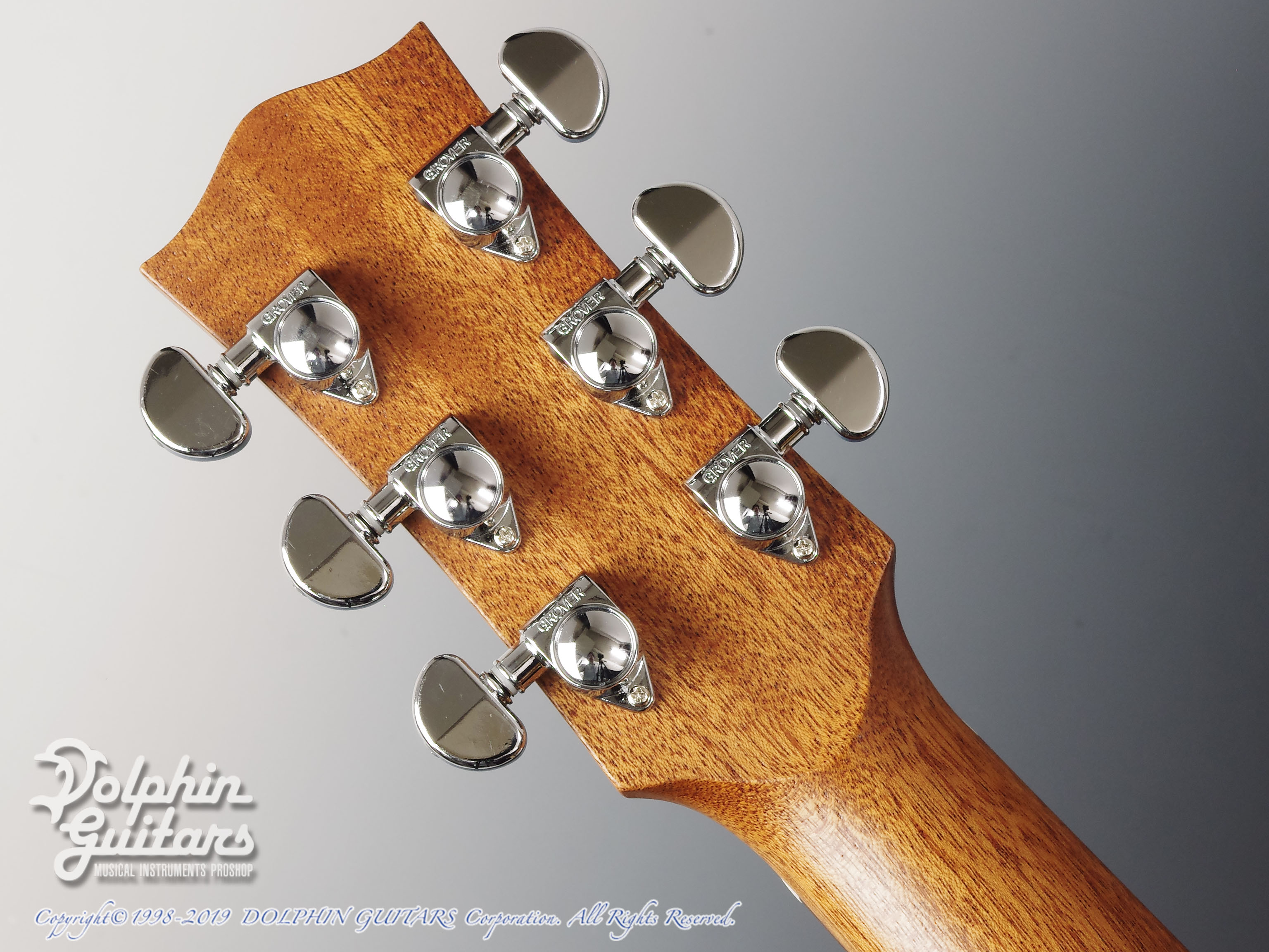 MATON: Custom Shop EBG808C Tommy Personal Thinline (7)