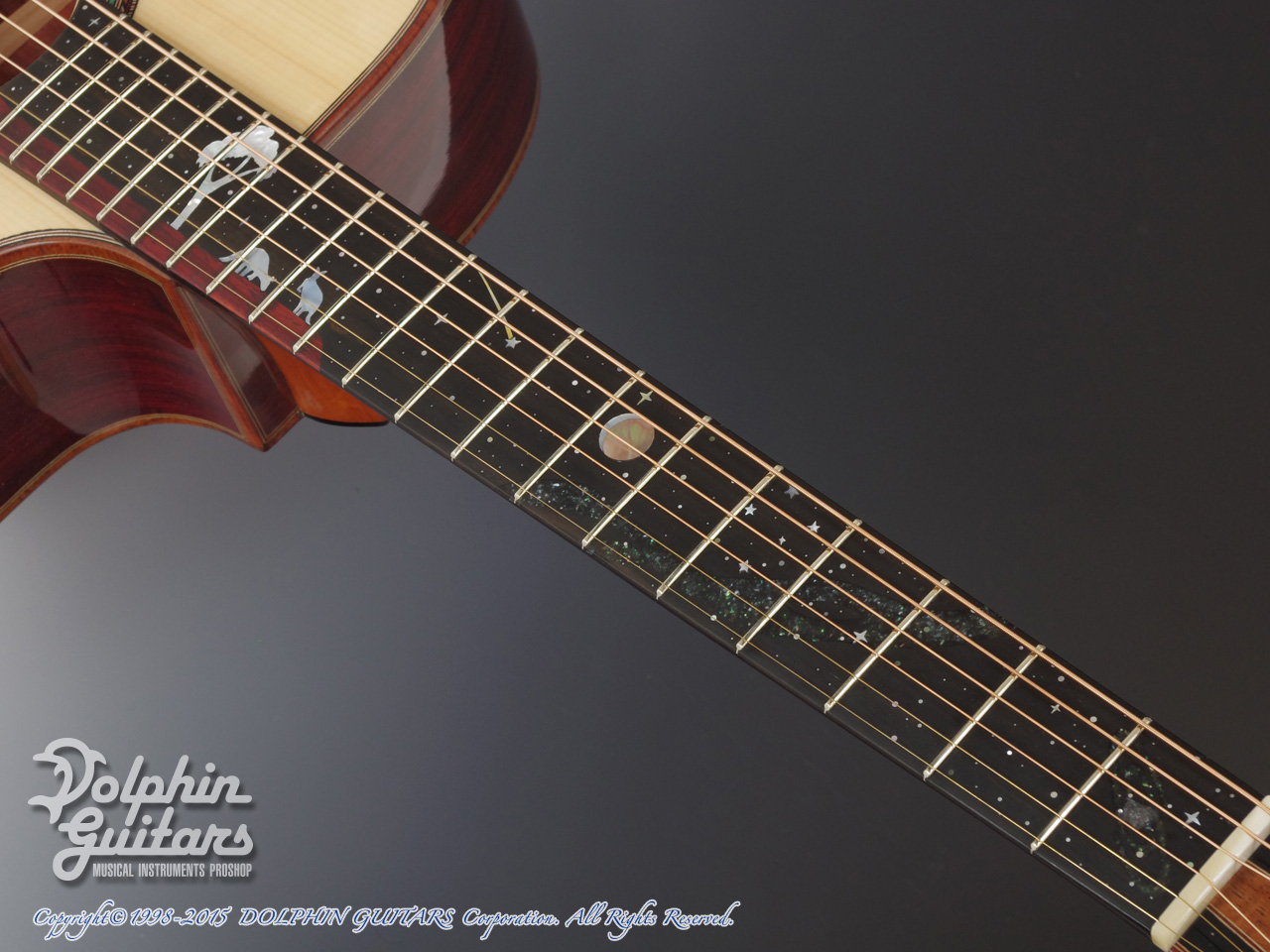 JACK SPIRA GUITARS: JS-5AC Night Sky (8)