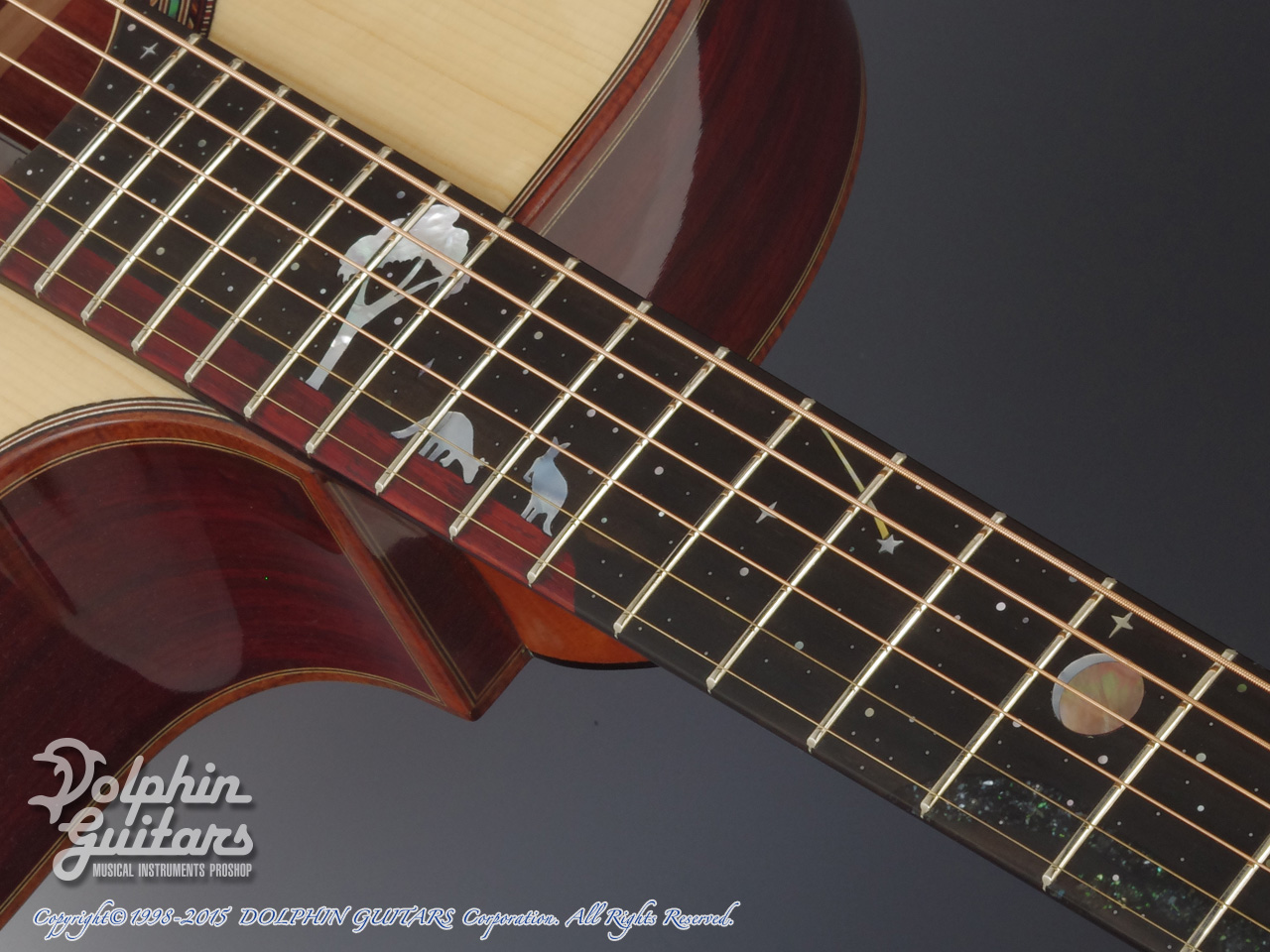 JACK SPIRA GUITARS: JS-5AC Night Sky (9)