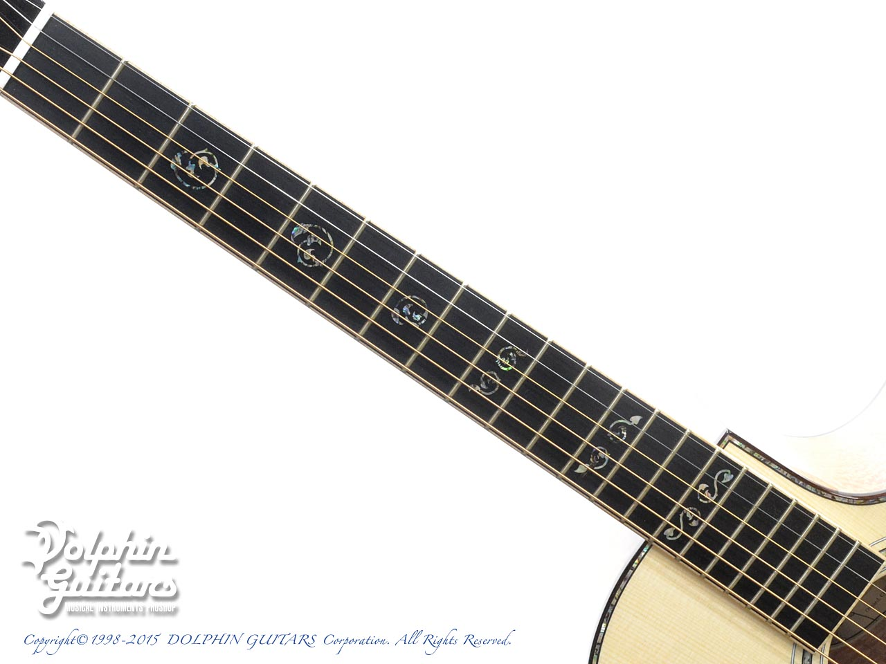 LARRIVEE: Custom Shop LV-10 Mucha Lady (Silver Oak) (4)