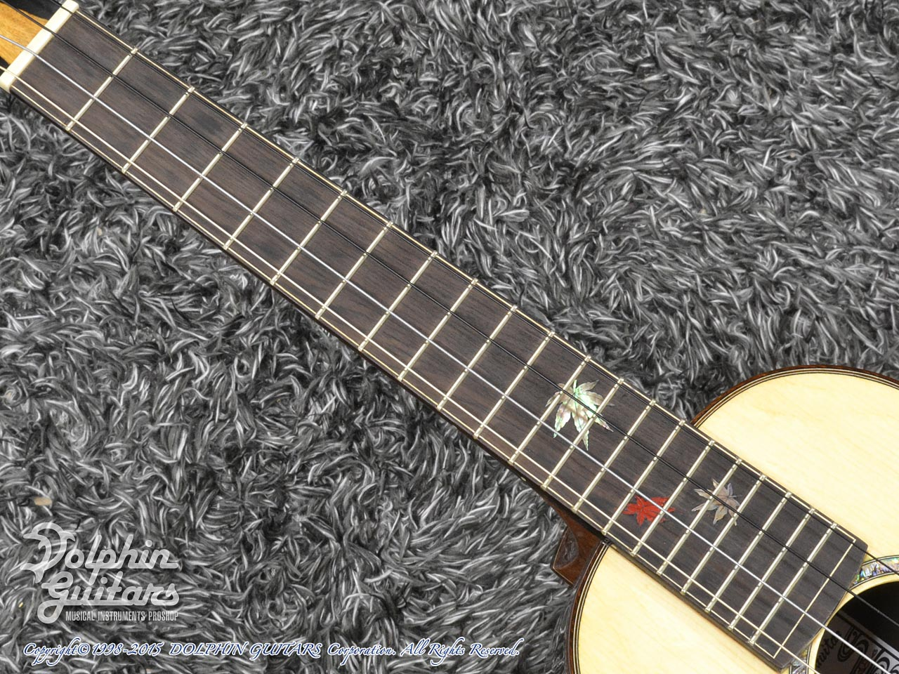 WATER ROAD GUITARS: Custom Tenor<German Spruce&African Black Wood> (4)