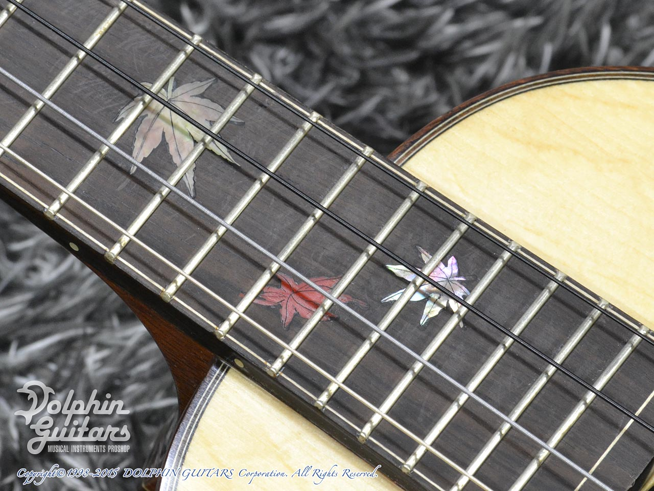 WATER ROAD GUITARS: Custom Tenor<German Spruce&African Black Wood> (8)