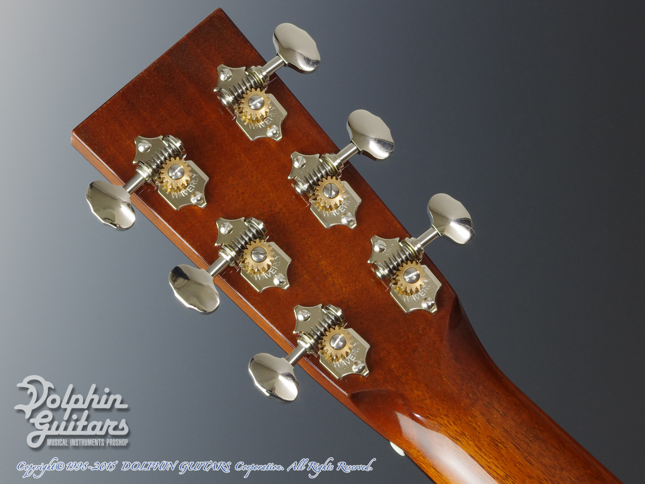 COLLINGS: D-1T (Torrefied Sitka Spruce) (7)