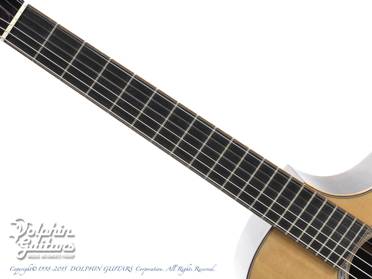 Breedlove: N25 Cutaway BCR (Nylon Strings) (4)