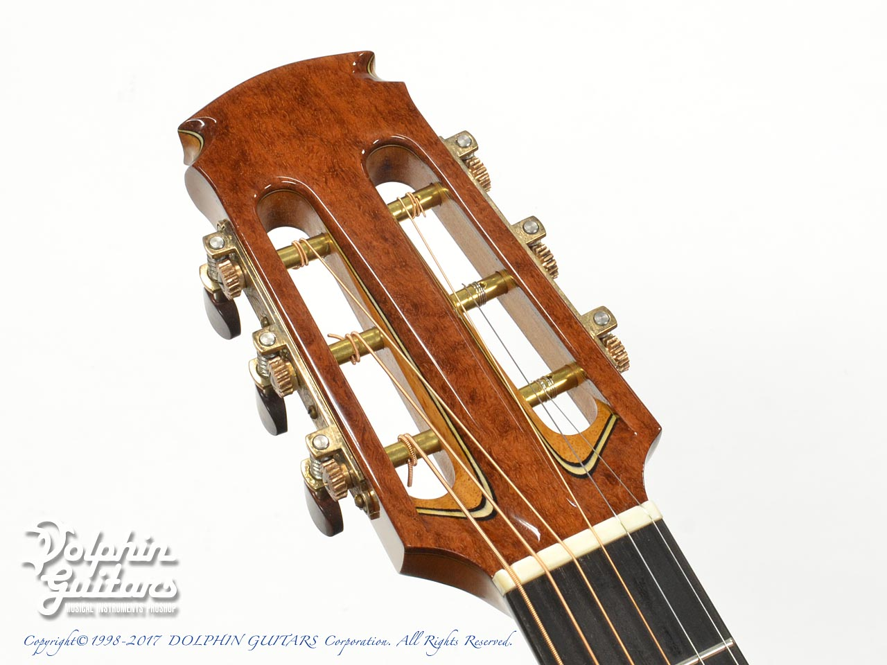 FUJII GUITARS: 00-12Fret Cutaway (Western Red Cedar & White Oak) (6)