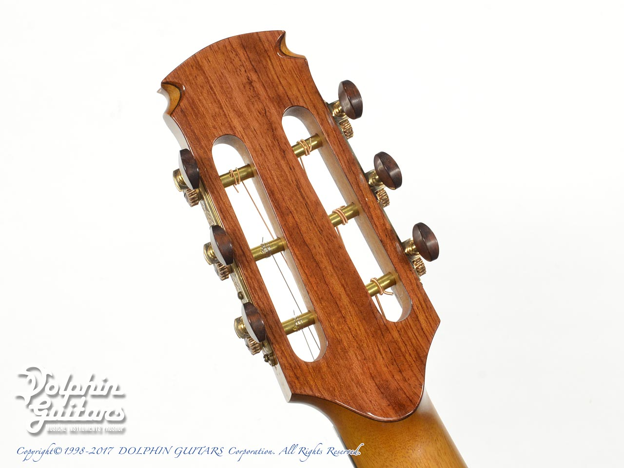 FUJII GUITARS: 00-12Fret Cutaway (Western Red Cedar & White Oak) (7)