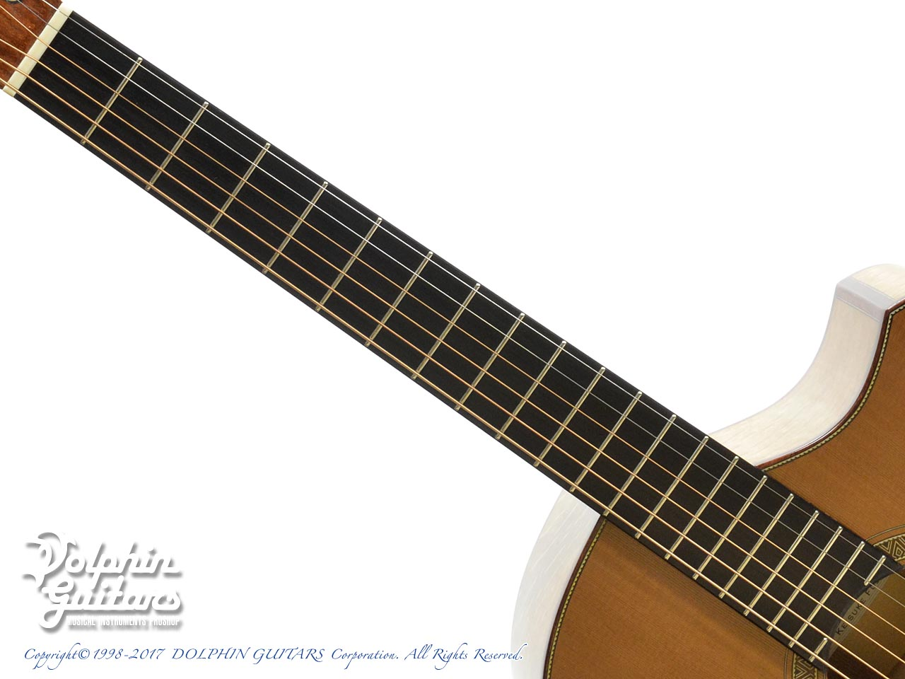 FUJII GUITARS: 00-12Fret Cutaway (Western Red Cedar & White Oak) (4)