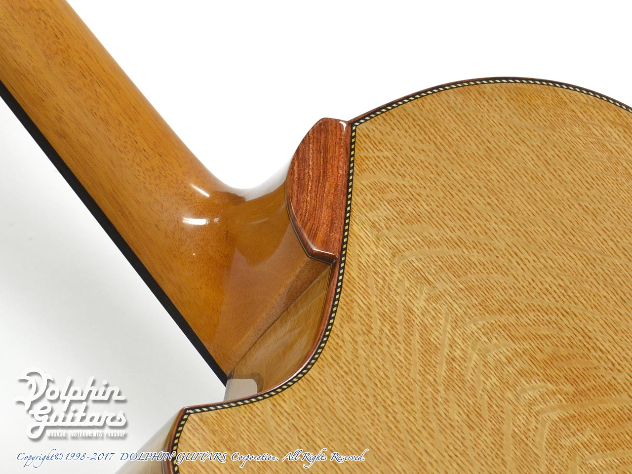 FUJII GUITARS: 00-12Fret Cutaway (Western Red Cedar & White Oak) (10)