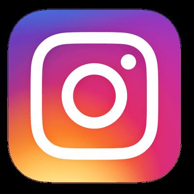 dolphinguitars instagram